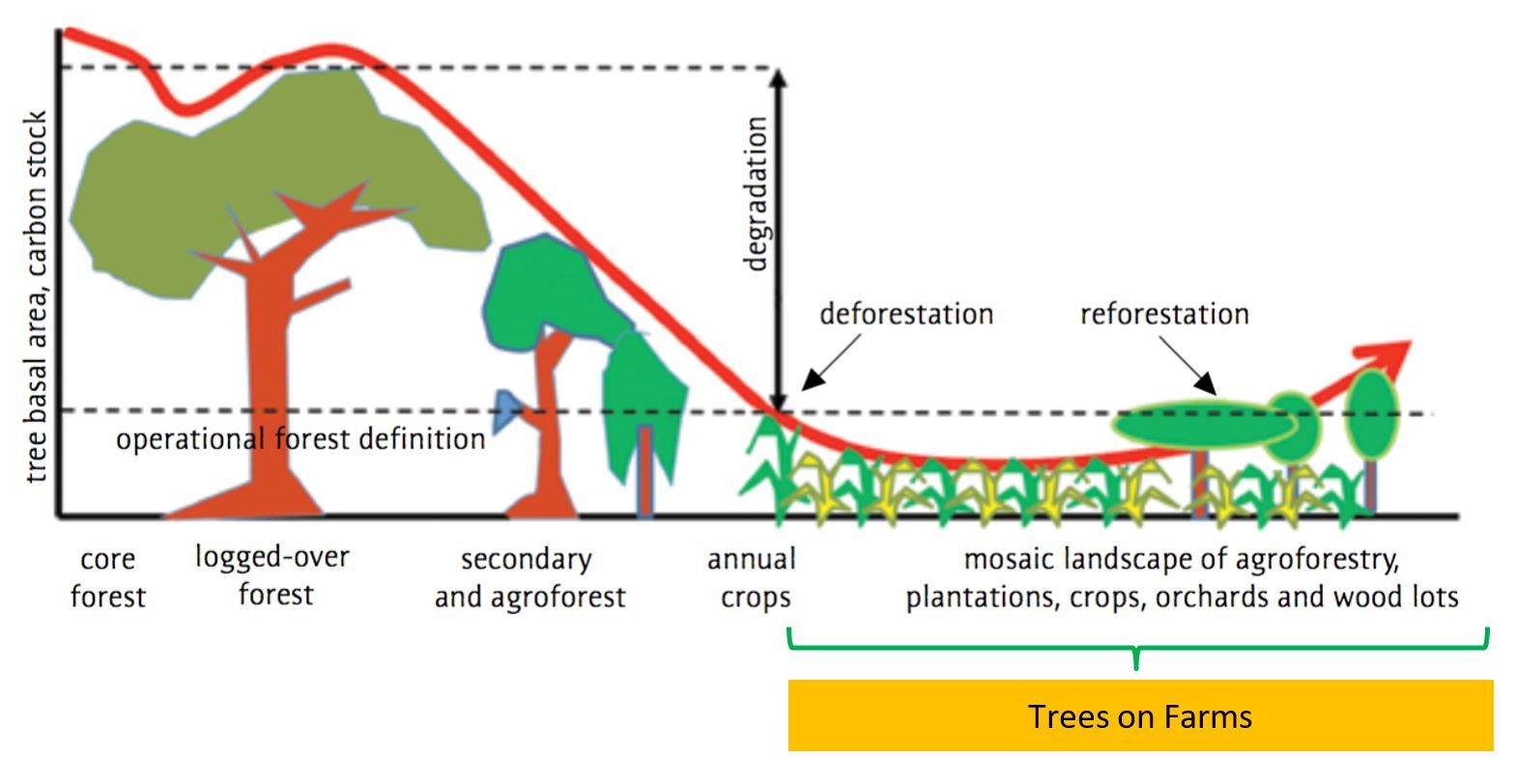 hight resolution of trees on farms play a critical role in providing some of the services forests provide because they maintain and restore high levels of landscape