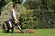 Our Favorite Fall Yard Care Tips