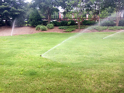Irrigation Spray Head