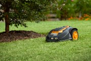 How to Get a Weed Free Lawn With No Added Maintenance