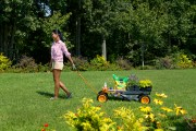 Every Gardening Tool You Need in Your Toolkit This Spring