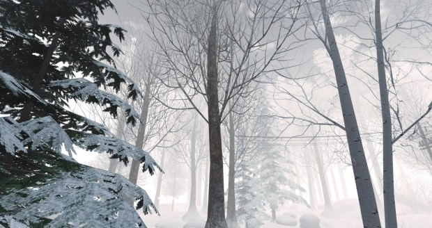 Winter 2015