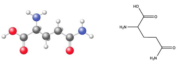 Fórmula química de la glutamina