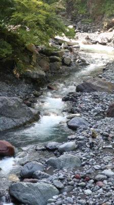 遠山川に釣り人