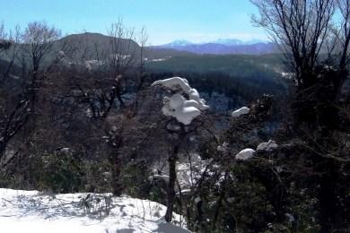5大門山と雪帽子