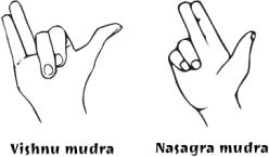 Texte de remplacement généré par une machine: Viçhnu mudra Naçacjra murlra