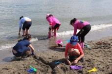 Gr1BeachCleanupandExploration_16Jun2017-4465