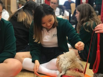 PuppyTherapy_09May2018-5481