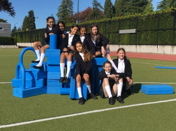 Yorkies with Blue Blocks