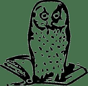 owl-30898_640