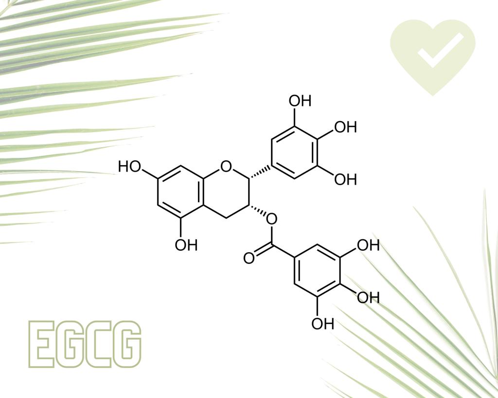 EGCG written in scientific form
