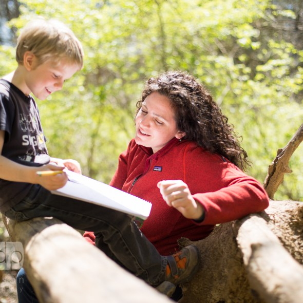 Forest Kindergarten Sit Spot