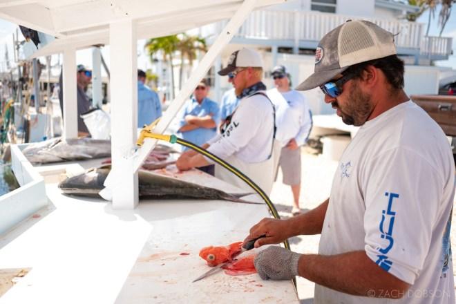Islamorada-Fisherman-Marina