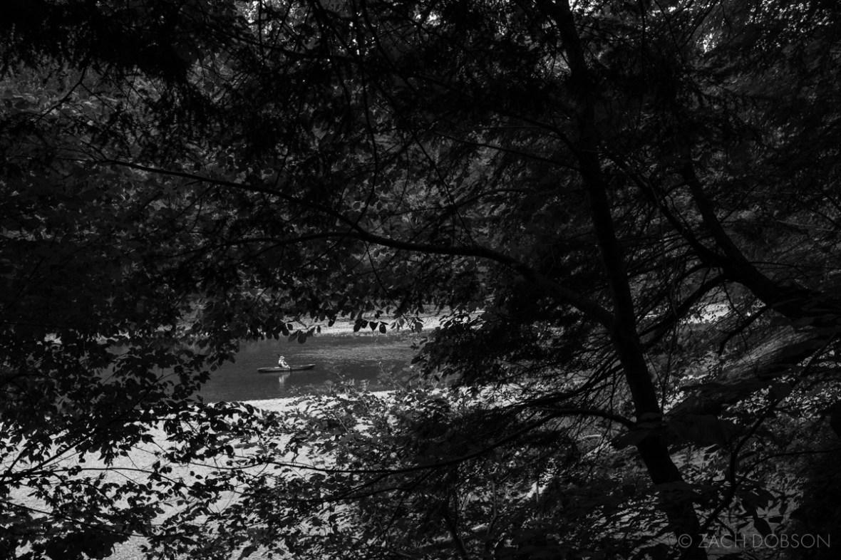 turkey run state park indiana hiking