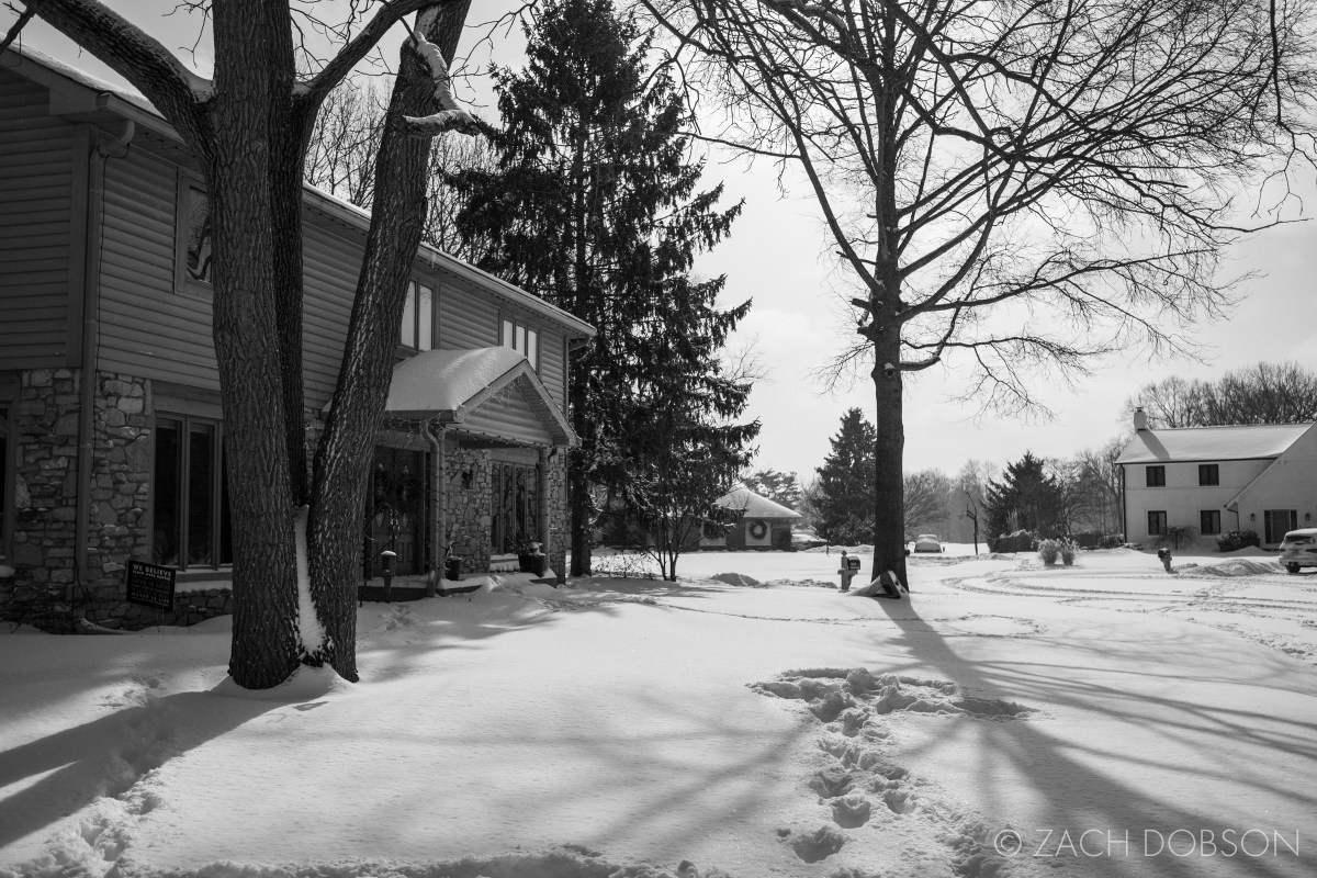 winter snow photography neighborhood suburbs