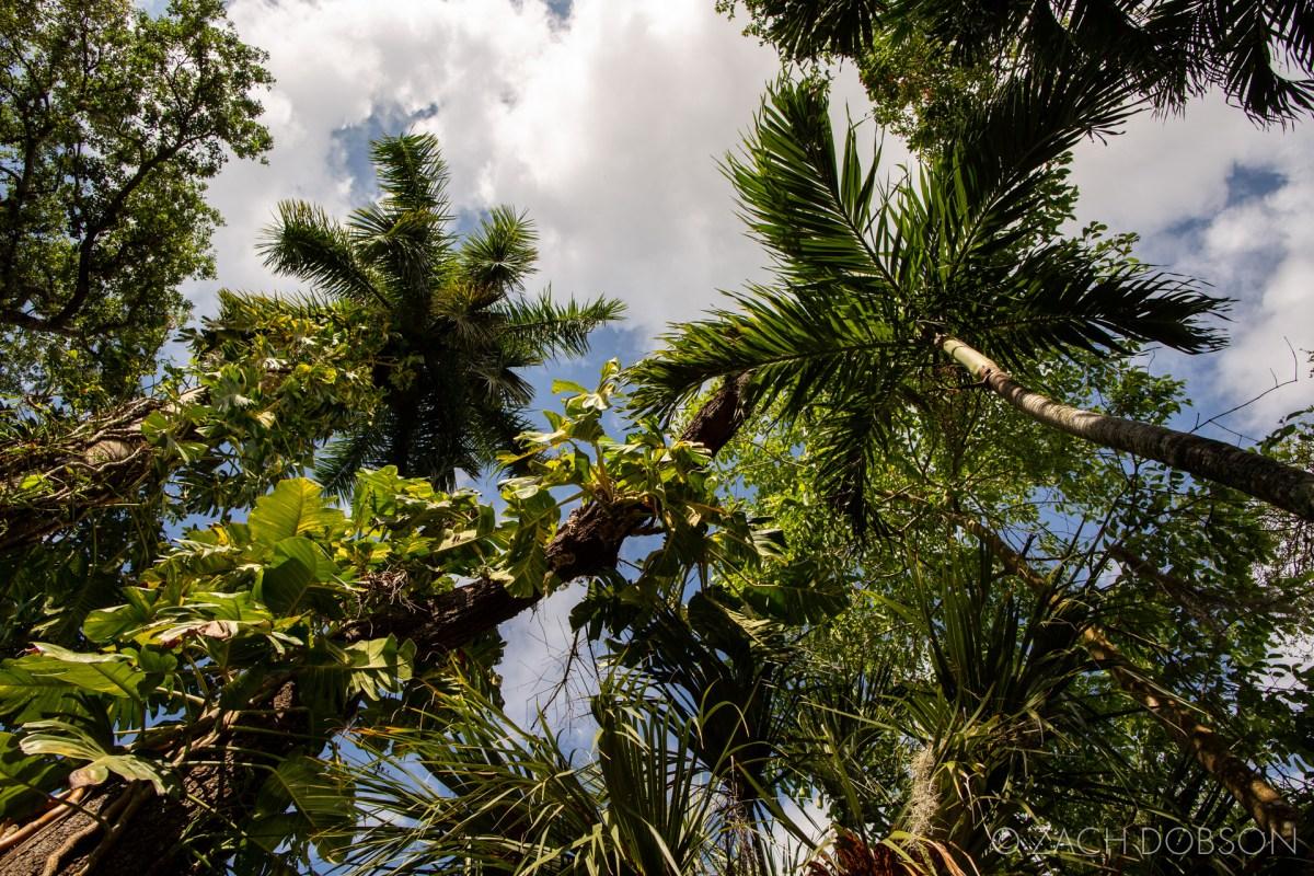 wonder gardens bonita springs