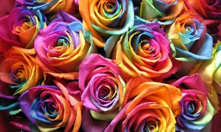 How to Create Rainbow Flowers