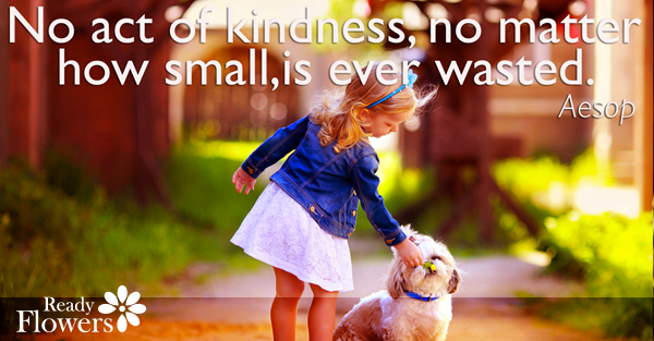 Kindness never wasted