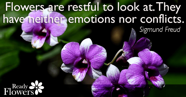 Restful flowers