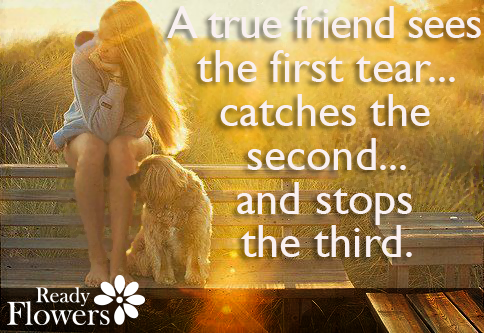 A true friend sees the first tear...catches the second...and stops the third.