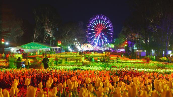 10 Spectacular Flower Festivals Around the World