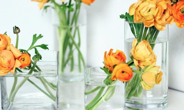DIY: 5 Ways To Extend The Life of Cut Flowers