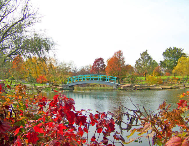 monet-bridge-in-park-in-autumn-1302795059w6k