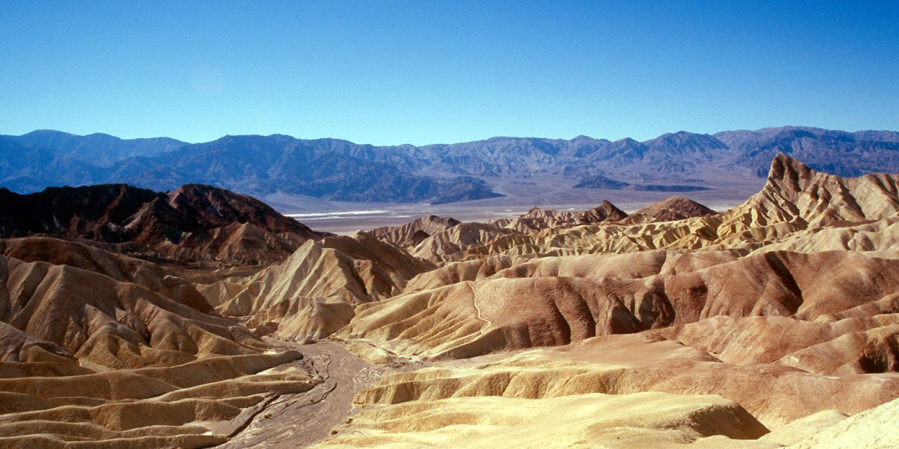 5 Things That Prove Life In Death Valley