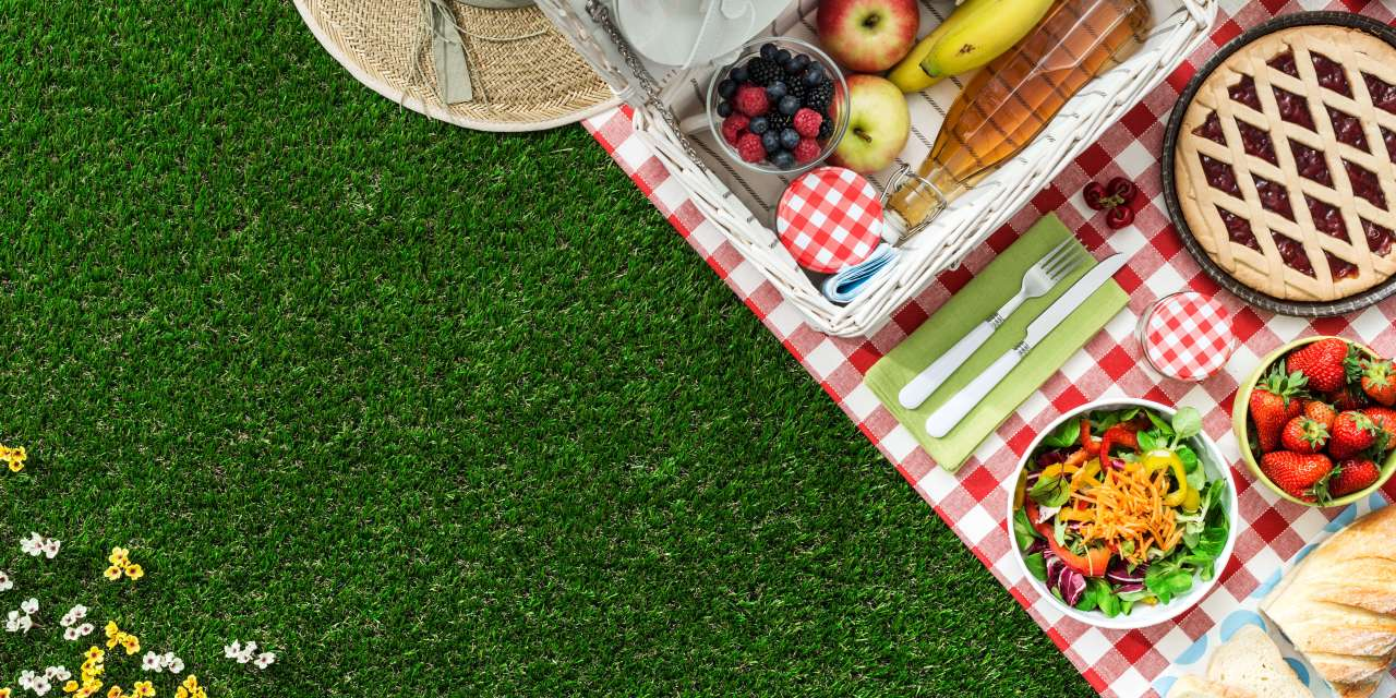 Your Most Memorable Picnic Day Ever