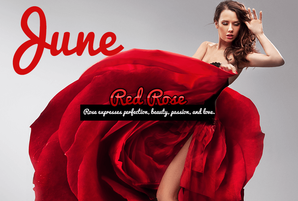 Discover the Secret Message of Your Birth Month Flower