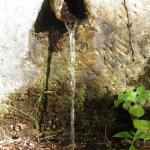P8250923 FILEminimizer - Le Terme di San Michele alle formiche