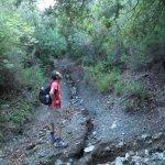 P8250932 FILEminimizer - Le Terme di San Michele alle formiche