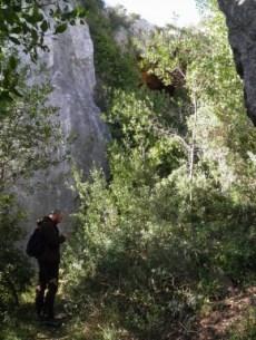 Il mic e la sua mappa e la grotta del Pippi che fa capolino in alto, nascosta degli alberi