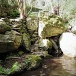 007 le villeggianti - Settimo Andreoni : lo scultore dei boschi di Montemagno