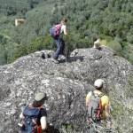 20160406 135102 FILEminimizer - Settimo Andreoni : lo scultore dei boschi di Montemagno