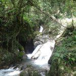 20160608 134849 e1465523093565 - Candalla, il cuore verde dei monti del Camaiorese.