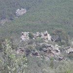 P4061695 FILEminimizer - Settimo Andreoni : lo scultore dei boschi di Montemagno