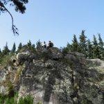P4061723 FILEminimizer - Settimo Andreoni : lo scultore dei boschi di Montemagno