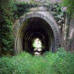 P5040035 FILEminimizer - La vecchia ferrovia sotto il fiume