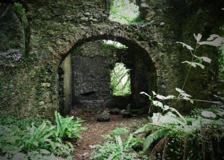 P6080233 - Candalla, il cuore verde dei monti del Camaiorese.