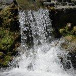 P6250301 - Il Pozzo di Serraiola sul fiume Cornia