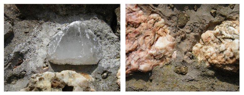 pietre preziose FILEminimizer - Settimo Andreoni : lo scultore dei boschi di Montemagno