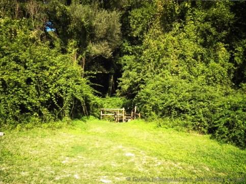entrata del sentiero per leremo di poggio conte - L'Eremo di Poggio Conte e il segreto dei templari