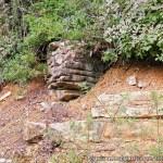 riserva naturale di caselli