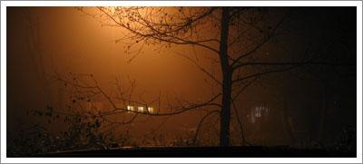 mist2.jpg