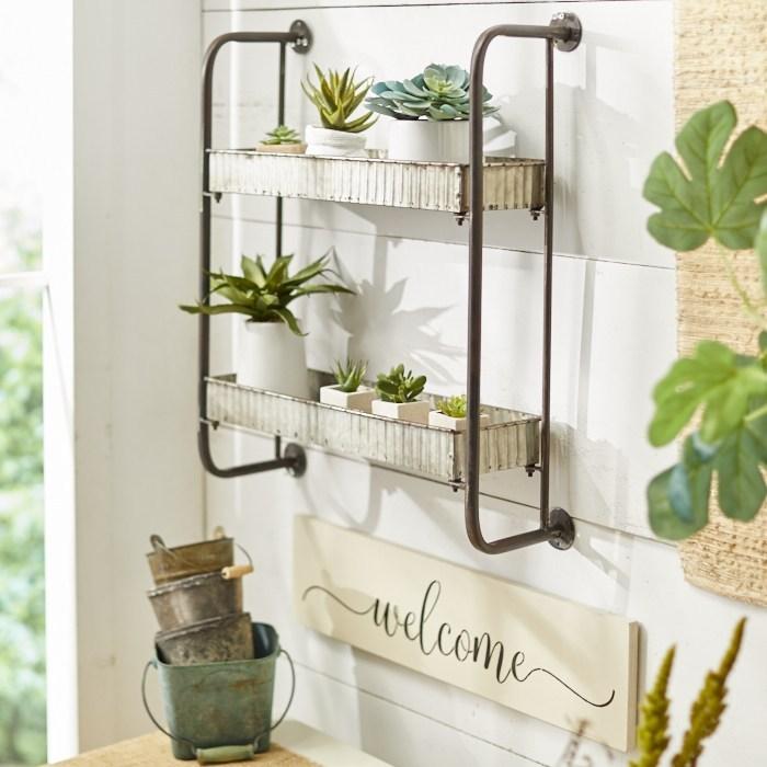 indoor gardening with succulents