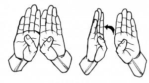 ASL Door