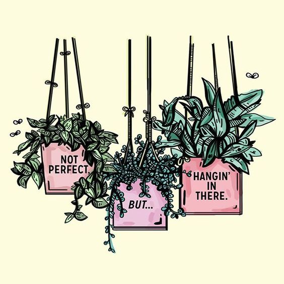 "a creative image with plants hanging from the ceiling with a few flies around them to inspire the reader with the quote, ""Not perfect, but… hangin' in there."""