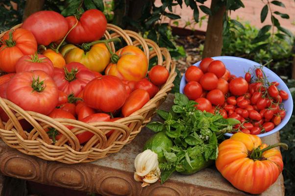 fresh produce at CSUN farmer's market Northridge LA