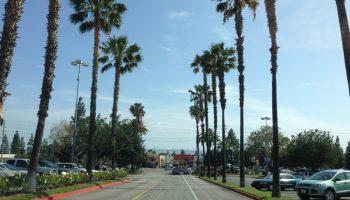 road in Northridge, LA, find rooms for rent